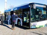 """Szczecin wyróżnia się tym, że zakupił osiem przegubowców i tyle samo """"krótkich"""" autobusów."""
