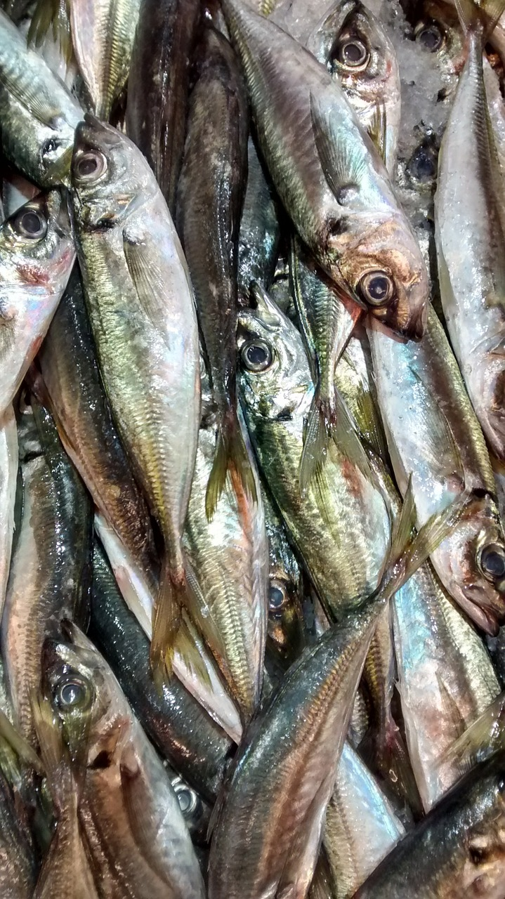 Czy odbędzie się jeszcze jeden targ rybny?