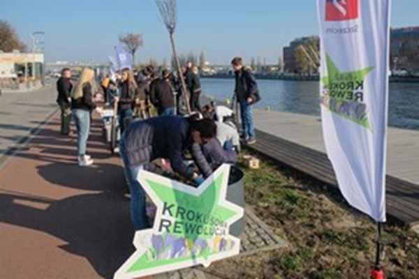 """W """"Krokusowej Rewolucji"""" wzięli udział uczniowie XVI Liceum Ogólnokształcącego w Szczecinie."""