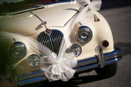 Sezon Ślubny rozpoczęty! Gdzie w Szczecinie zorganizować wesele?